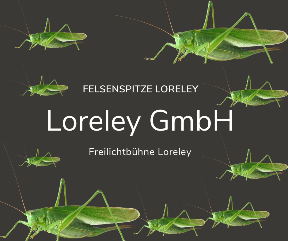 Loreley GmbH